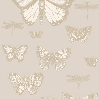 Tapeta Butterflies & Dragonflies 103/15064