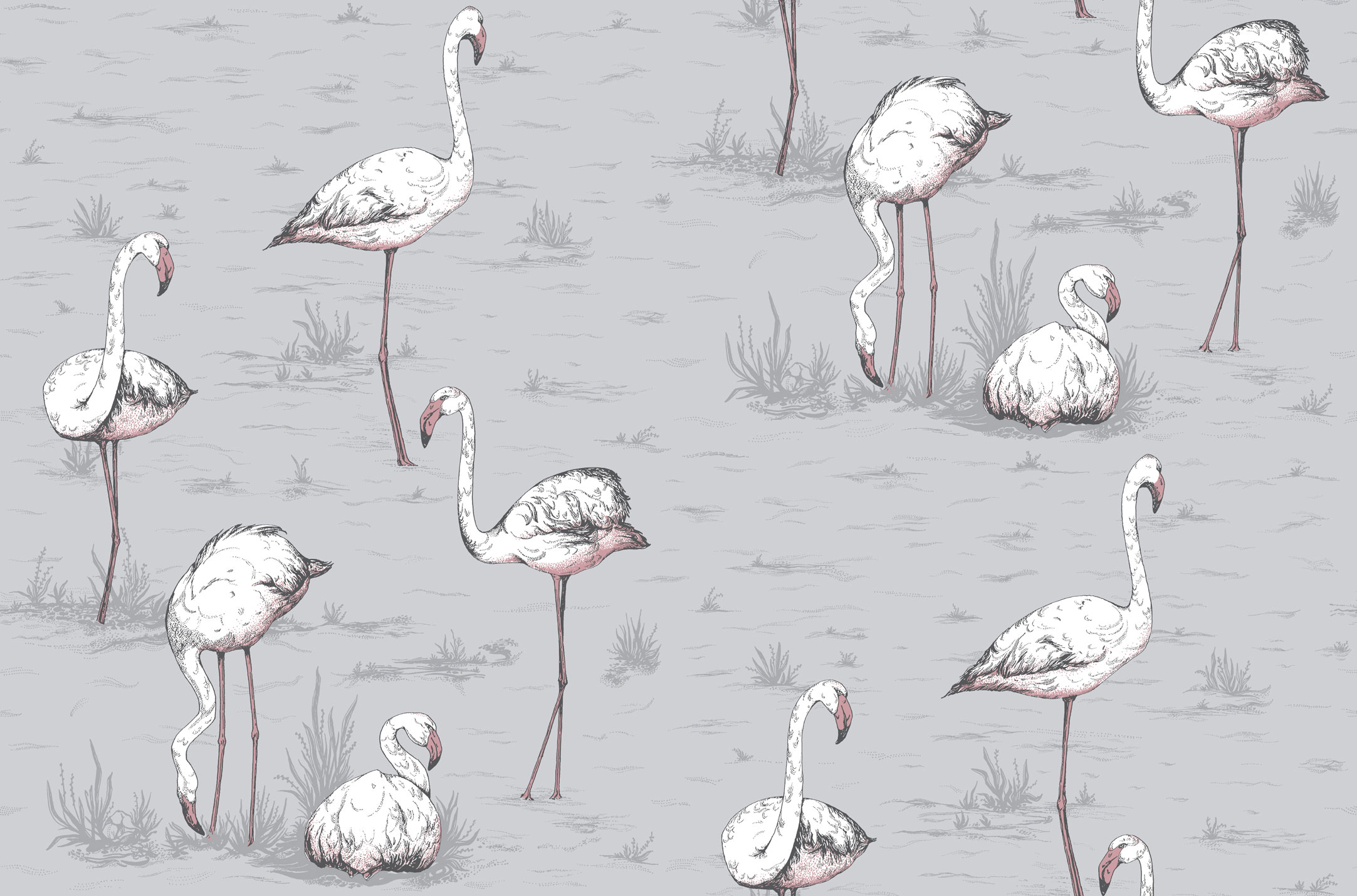 Tapeta Flamingos 112/11040